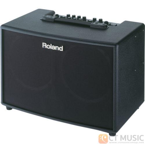 แอมป์อคูสติก Roland AC-90