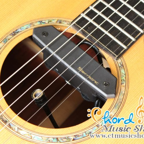 Skysonic T-902 Active Double Pickup ( Michrophone + Magnetic )