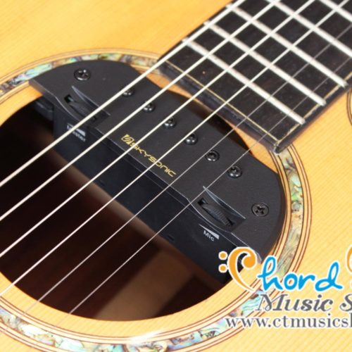 Skysonic T-903 Active Double Pickup ( Michrophone + Magnetic )