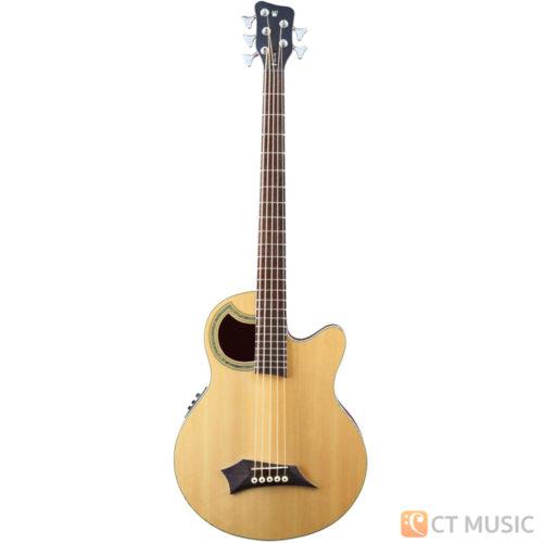 เบสไฟฟ้า Warwick Alien Deluxe Acoustic Bass 5 String