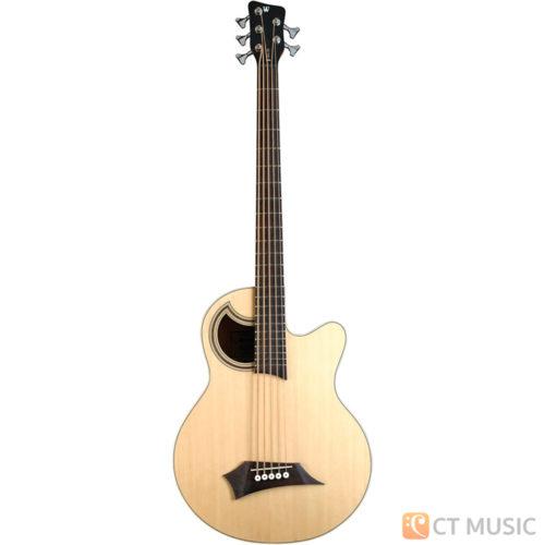 เบสไฟฟ้า Warwick Alien Standard Acoustic Bass 5 String